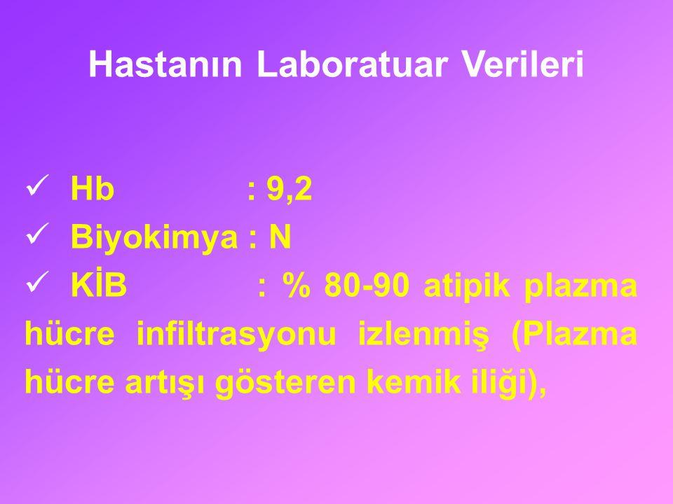 Hastanın Laboratuar Verileri