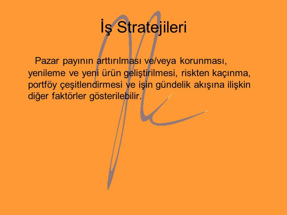 İş Stratejileri
