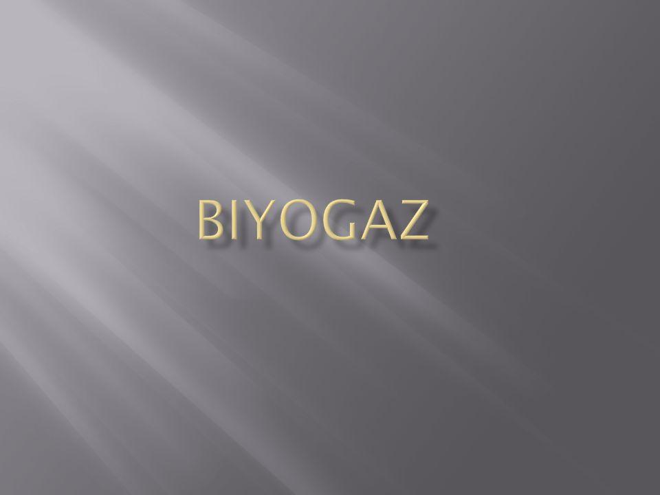 Biyogaz