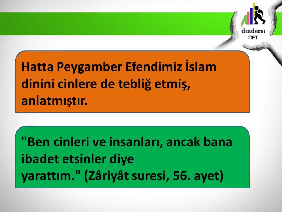 Hatta Peygamber Efendimiz İslam dinini cinlere de tebliğ etmiş, anlatmıştır.