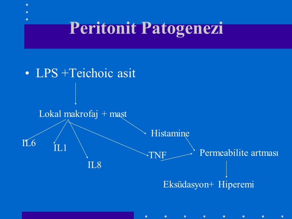 Peritonit Patogenezi LPS +Teichoic asit Lokal makrofaj + mast