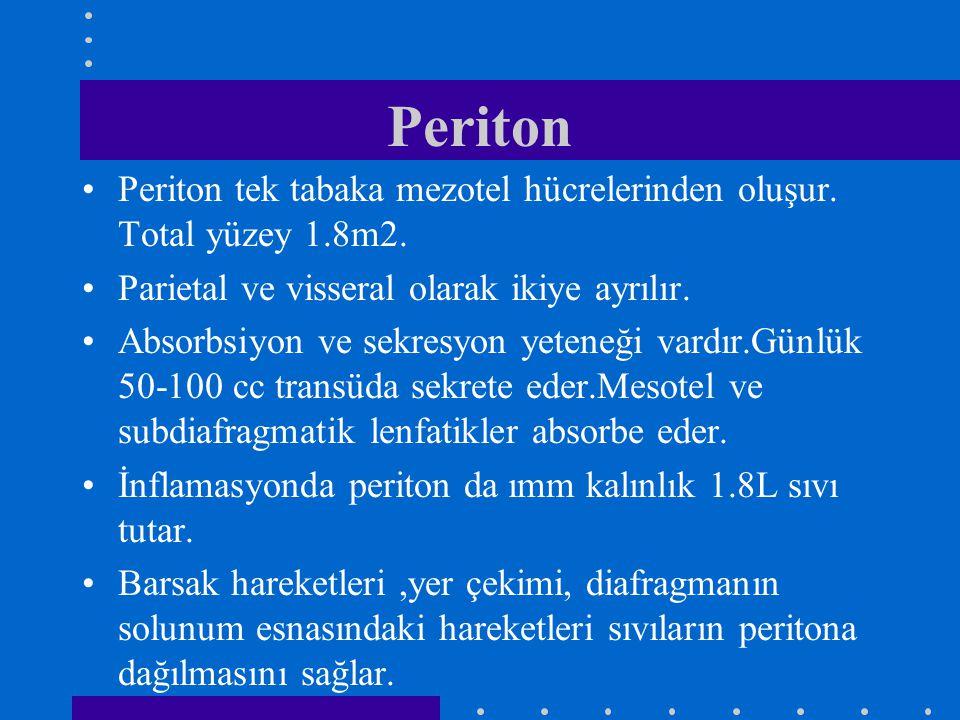 Periton Periton tek tabaka mezotel hücrelerinden oluşur. Total yüzey 1.8m2. Parietal ve visseral olarak ikiye ayrılır.