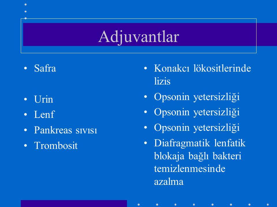 Adjuvantlar Safra Urin Lenf Pankreas sıvısı Trombosit