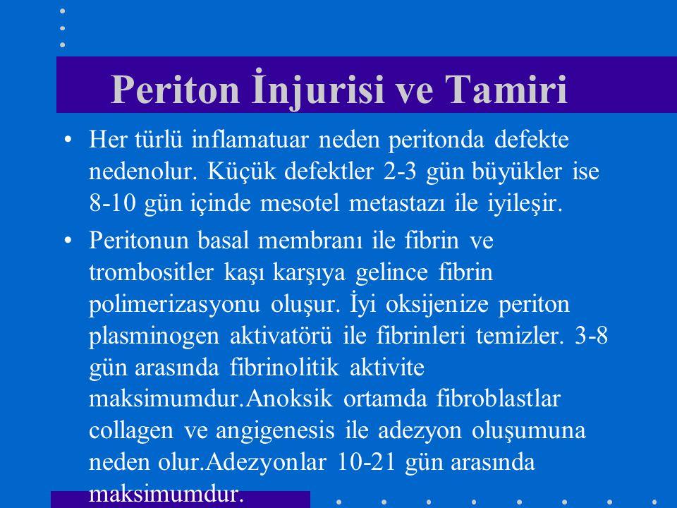 Periton İnjurisi ve Tamiri