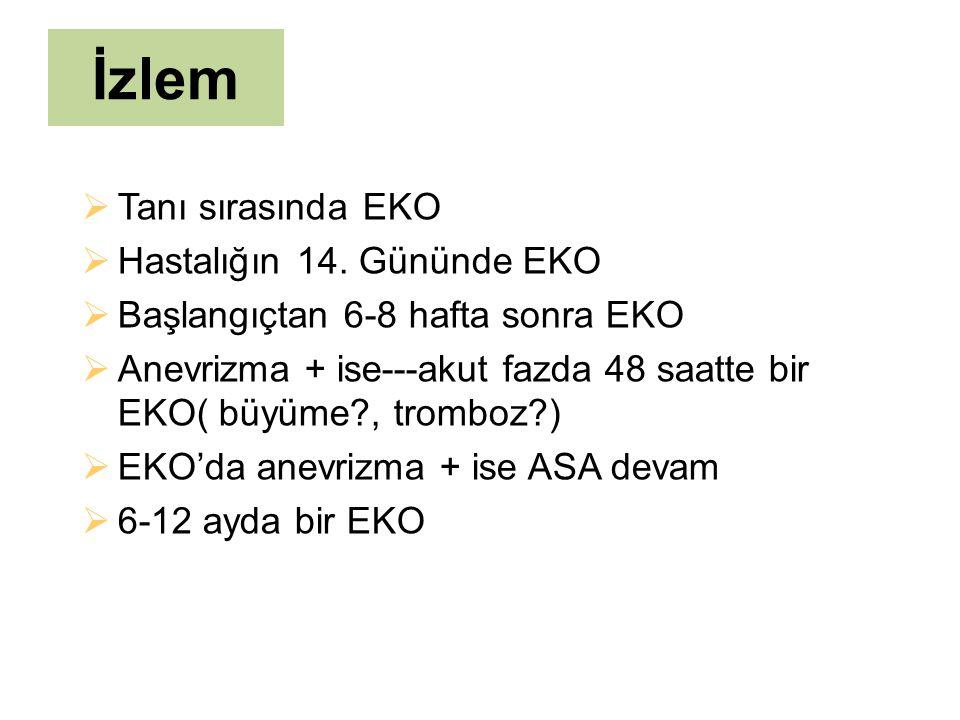 İzlem Tanı sırasında EKO Hastalığın 14. Gününde EKO