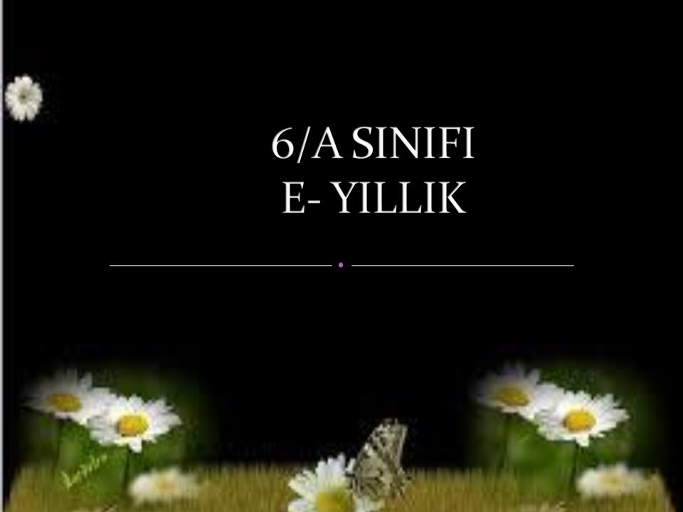 6/A SINIFI E- YILLIK