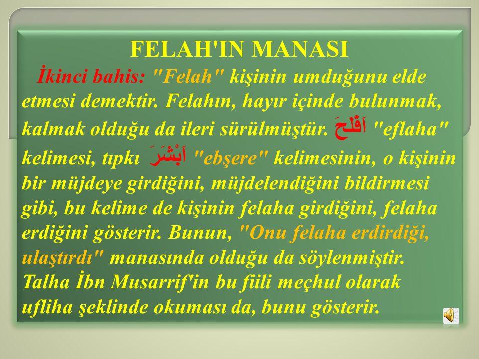 FELAH IN MANASI