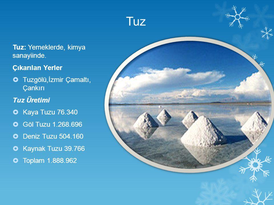 Tuz Tuz: Yemeklerde, kimya sanayiinde. Çıkarılan Yerler