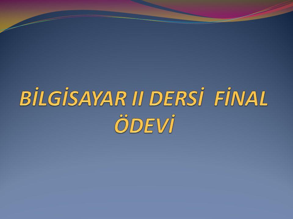 BİLGİSAYAR II DERSİ FİNAL ÖDEVİ