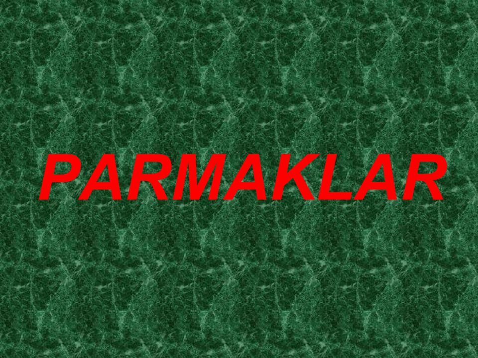 PARMAKLAR