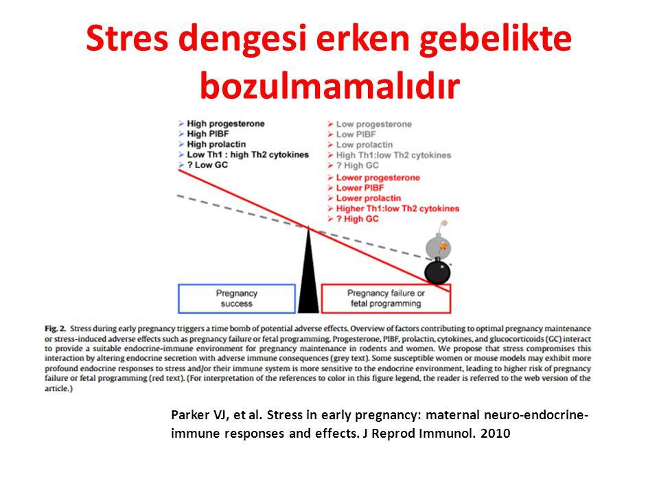 Stres dengesi erken gebelikte bozulmamalıdır