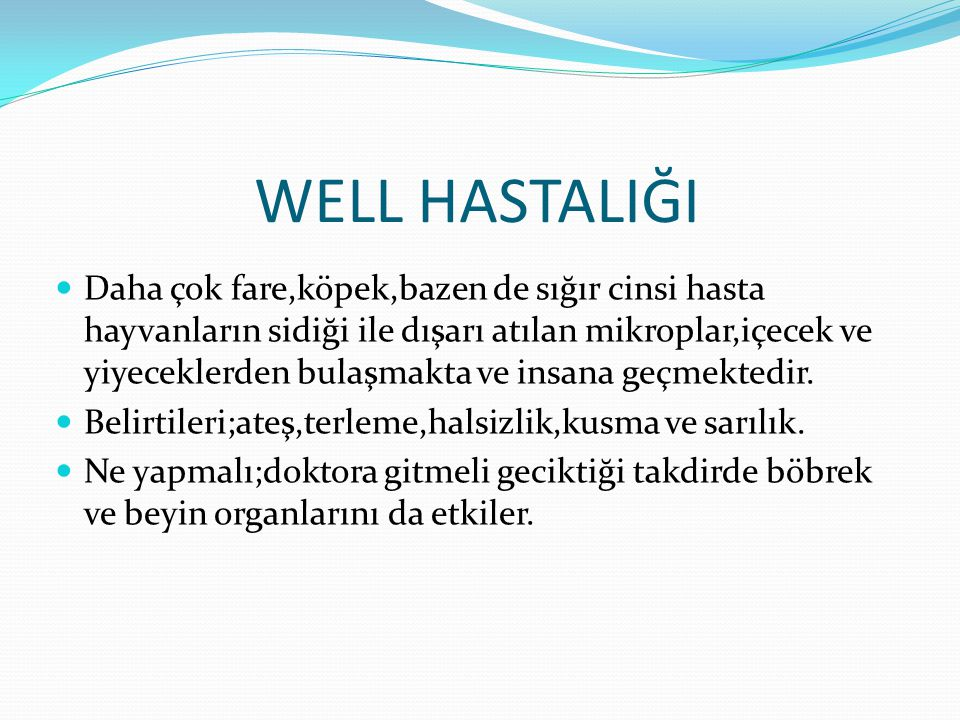 WELL HASTALIĞI