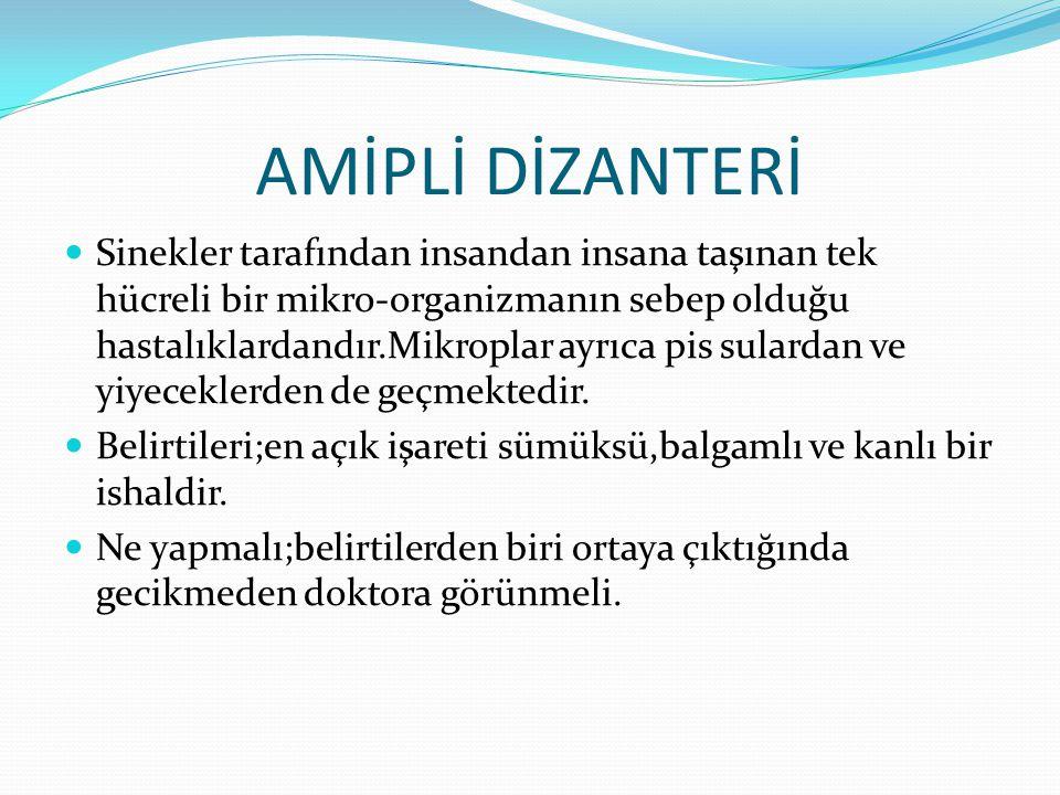 AMİPLİ DİZANTERİ