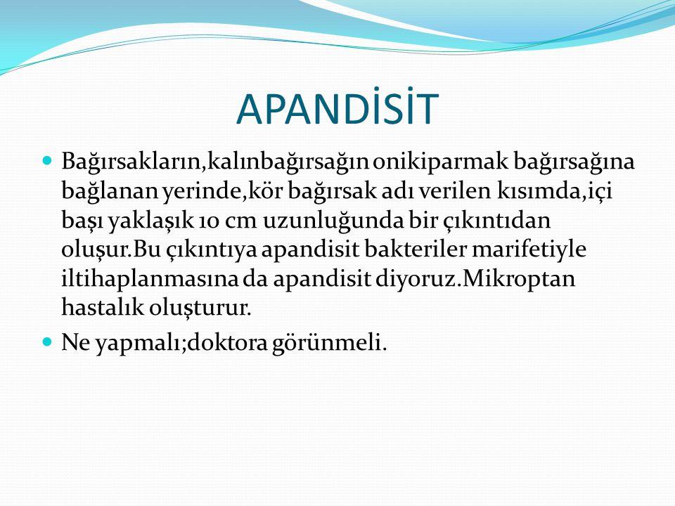 APANDİSİT