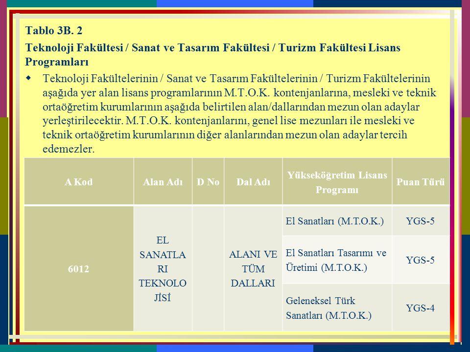 Yükseköğretim Lisans Programı