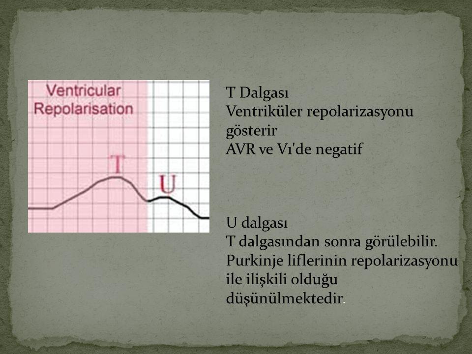 T Dalgası Ventriküler repolarizasyonu gösterir. AVR ve V1 de negatif. U dalgası. T dalgasından sonra görülebilir.