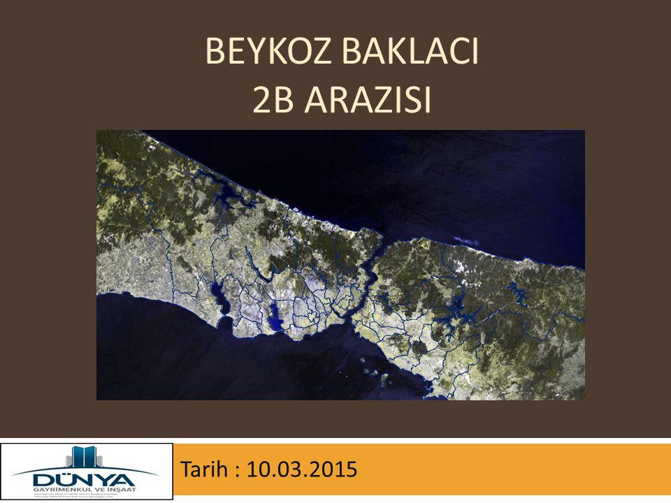 Beykoz BaklacI 2b arazisi
