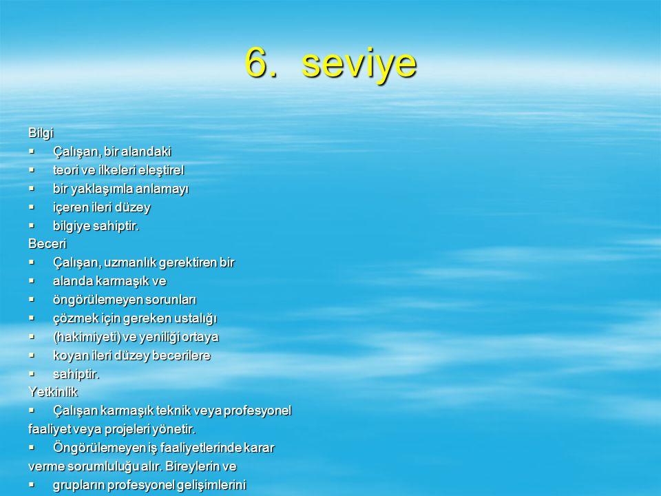 6. seviye Bilgi Çalışan, bir alandaki teori ve ilkeleri eleştirel