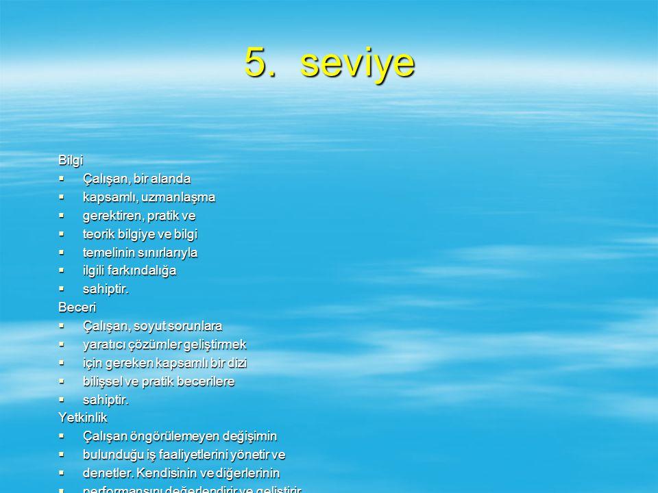 5. seviye Bilgi Çalışan, bir alanda kapsamlı, uzmanlaşma