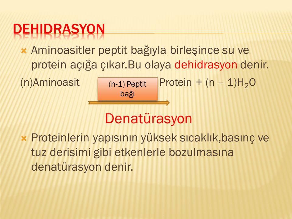 Denatürasyon Dehidrasyon