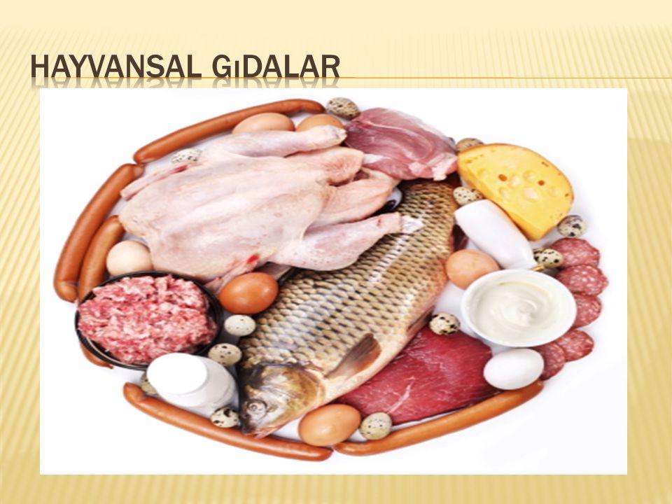 Hayvansal gıdalar