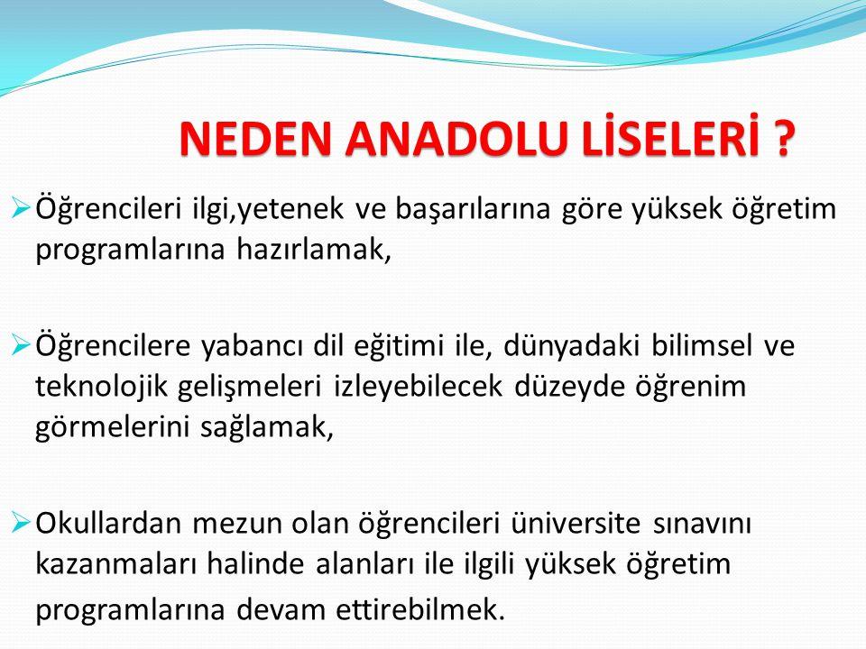 NEDEN ANADOLU LİSELERİ
