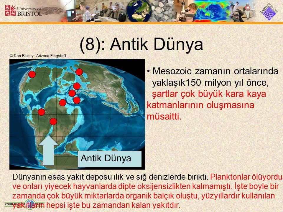 (8): Antik Dünya Mesozoic zamanın ortalarında