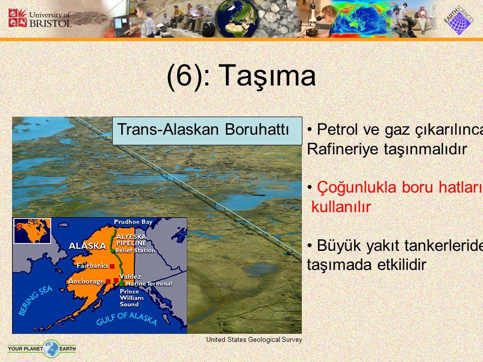 (6): Taşıma Trans-Alaskan Boruhattı Petrol ve gaz çıkarılınca