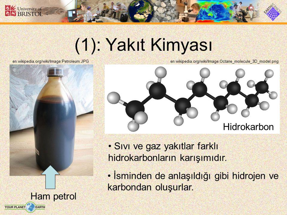 (1): Yakıt Kimyası Hidrokarbon