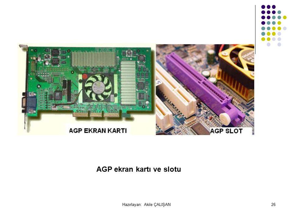 AGP ekran kartı ve slotu