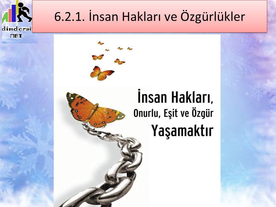 6.2.1. İnsan Hakları ve Özgürlükler