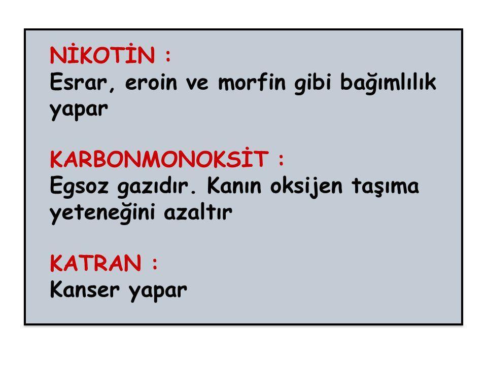 NİKOTİN : Esrar, eroin ve morfin gibi bağımlılık yapar KARBONMONOKSİT : Egsoz gazıdır.