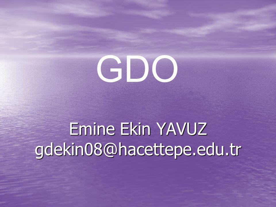 Emine Ekin YAVUZ gdekin08@hacettepe.edu.tr
