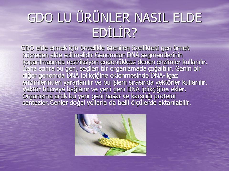GDO LU ÜRÜNLER NASIL ELDE EDİLİR