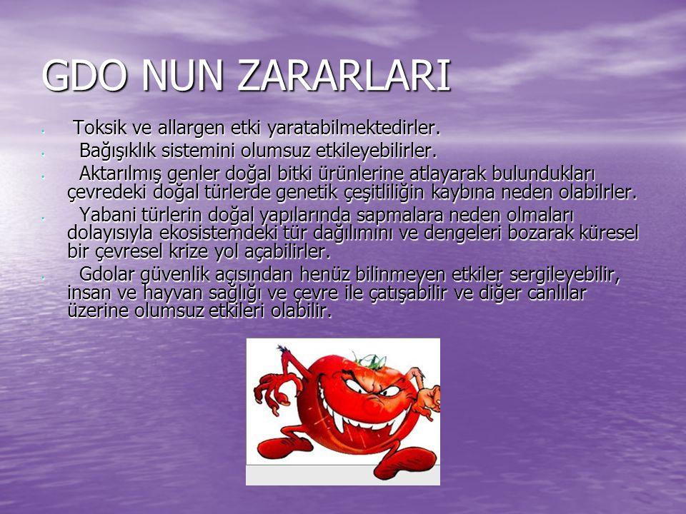 GDO NUN ZARARLARI Toksik ve allargen etki yaratabilmektedirler.