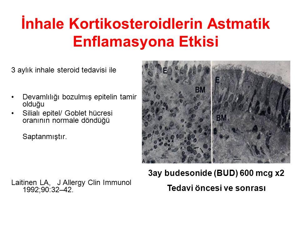 İnhale Kortikosteroidlerin Astmatik Enflamasyona Etkisi