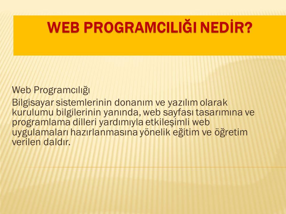 WEB PROGRAMCILIĞI NEDİR