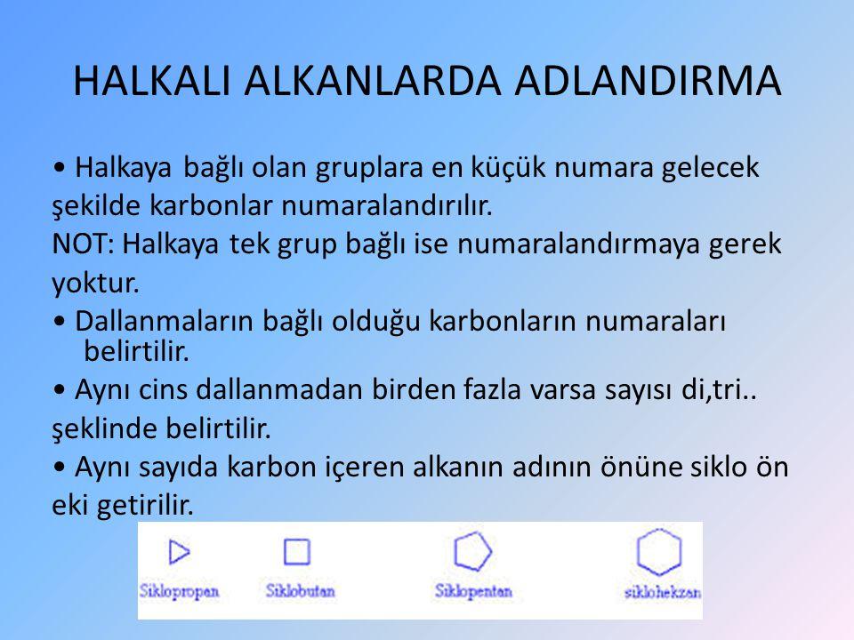 HALKALI ALKANLARDA ADLANDIRMA