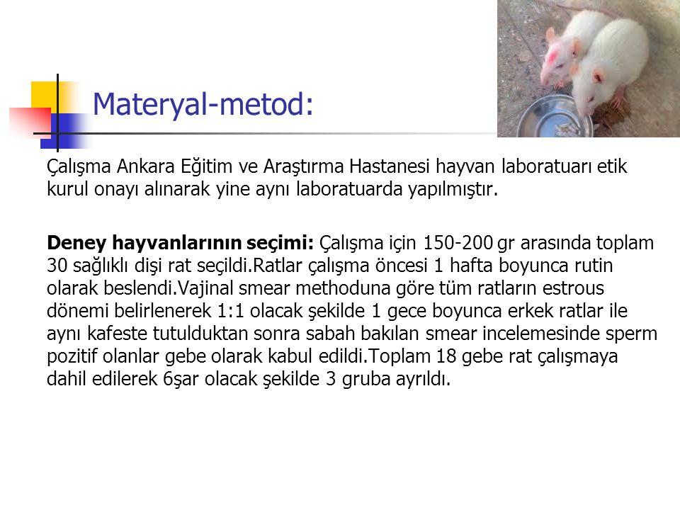Materyal-metod: Çalışma Ankara Eğitim ve Araştırma Hastanesi hayvan laboratuarı etik kurul onayı alınarak yine aynı laboratuarda yapılmıştır.