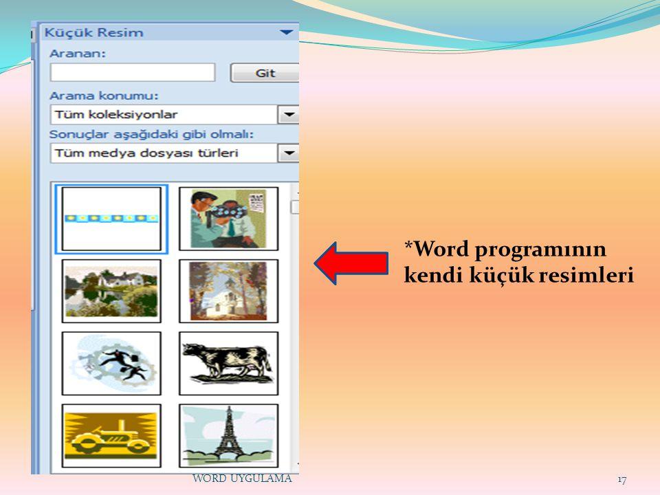*Word programının kendi küçük resimleri
