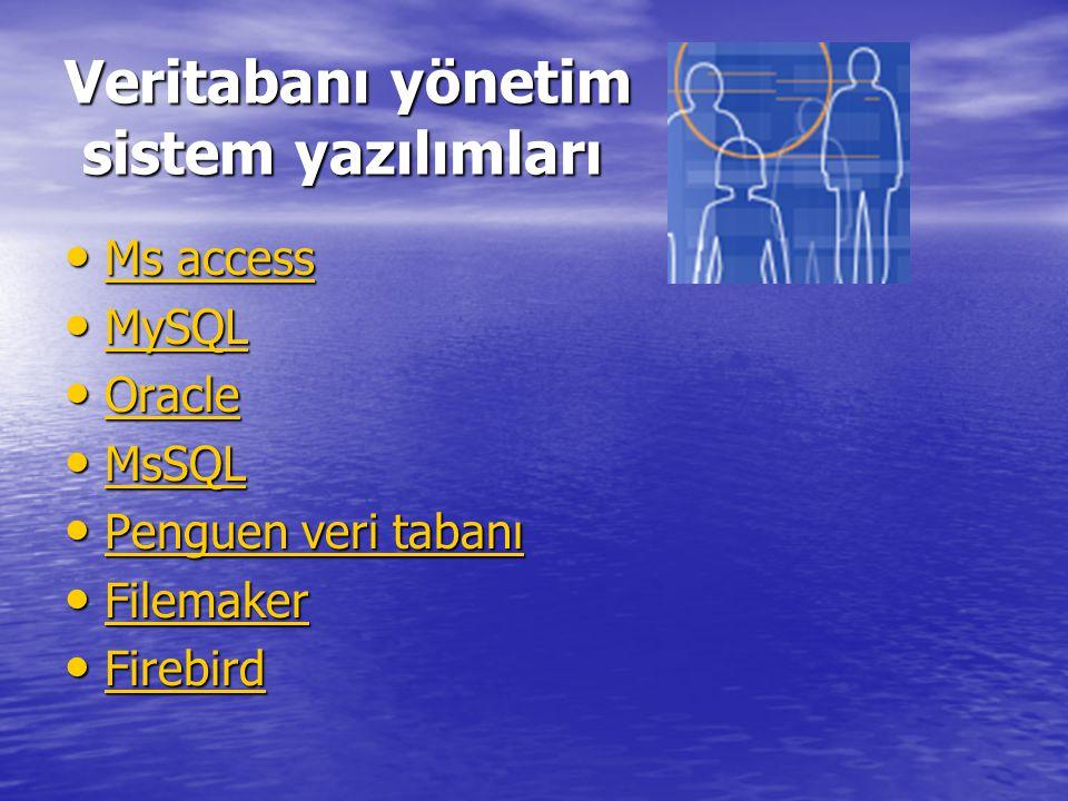 Veritabanı yönetim sistem yazılımları