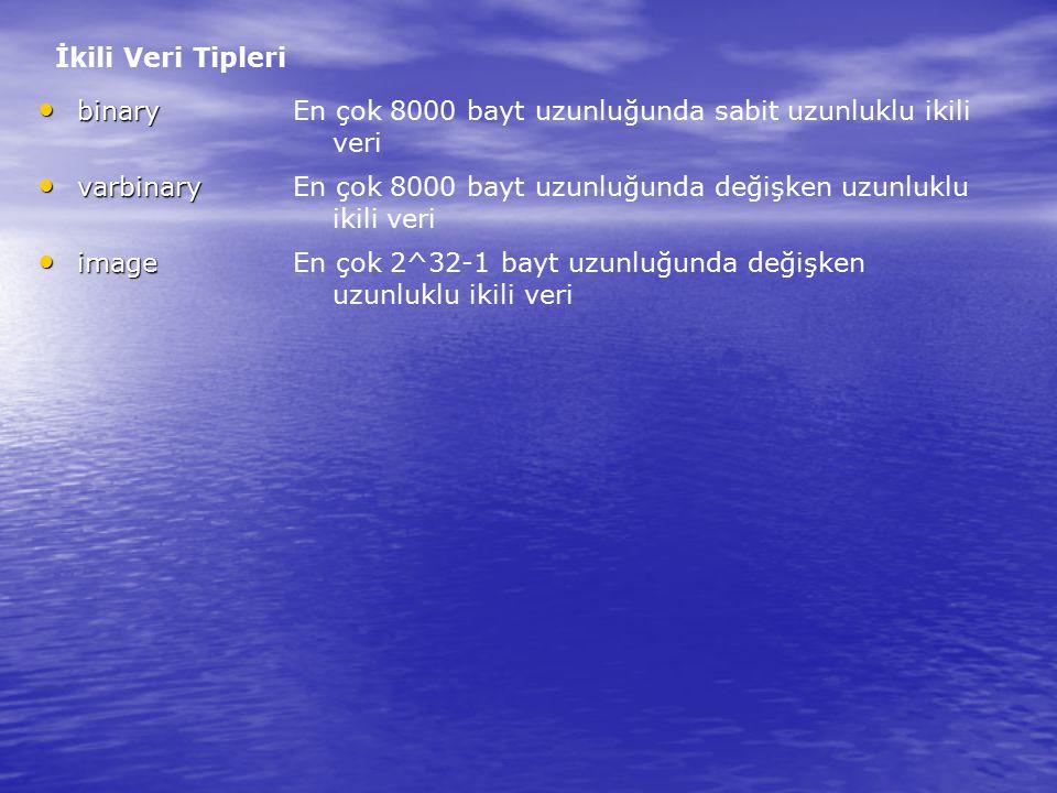 İkili Veri Tipleri binary. varbinary. image. En çok 8000 bayt uzunluğunda sabit uzunluklu ikili veri.