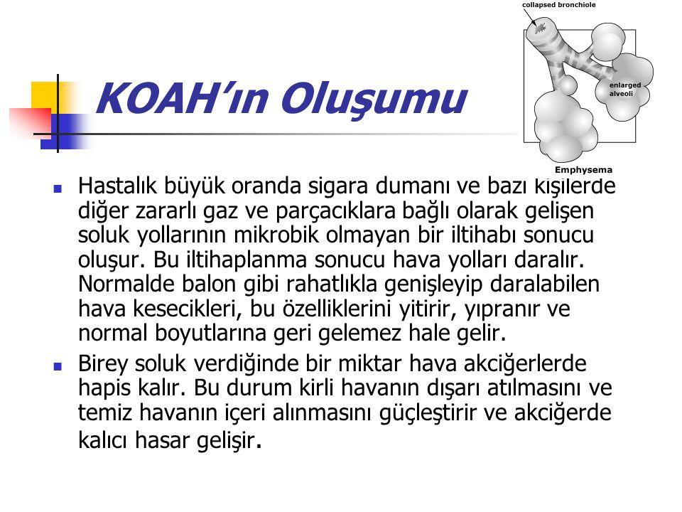 KOAH'ın Oluşumu