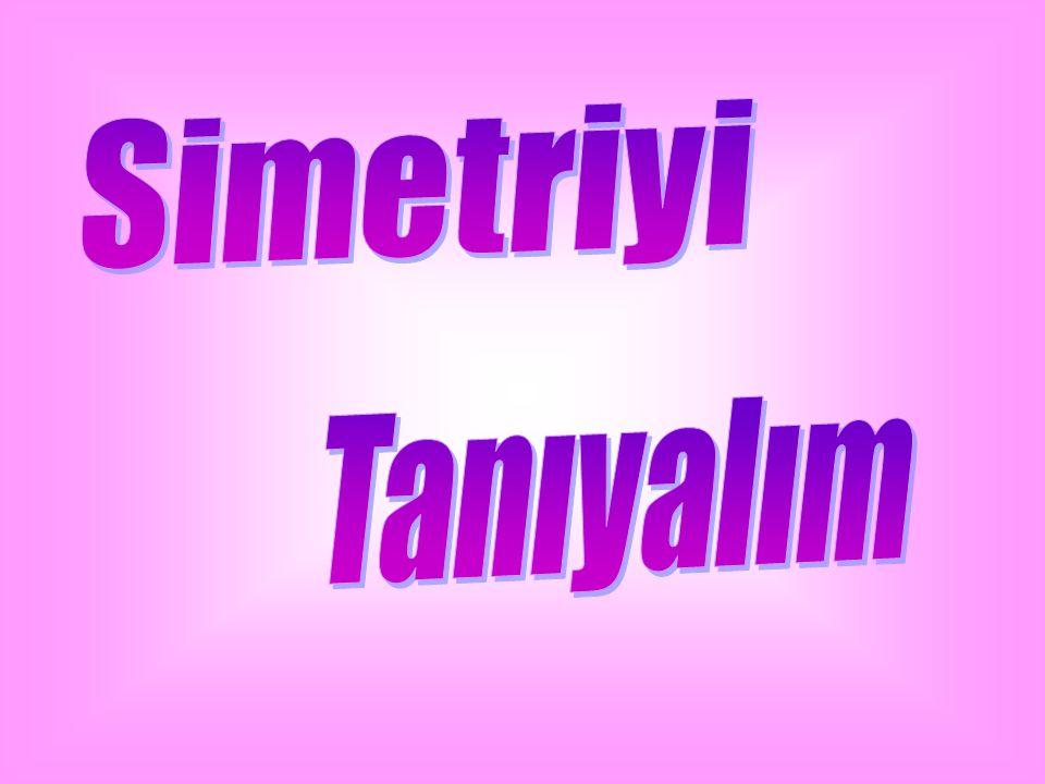 Simetriyi Tanıyalım