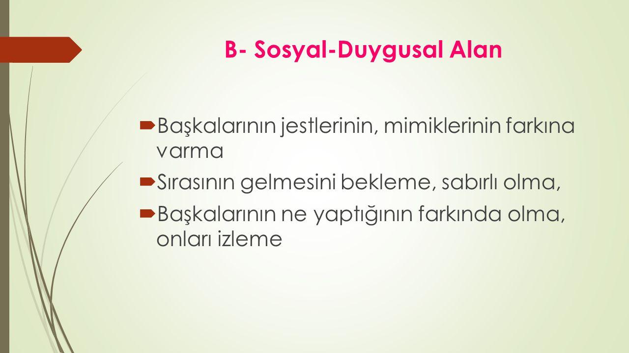 B- Sosyal-Duygusal Alan