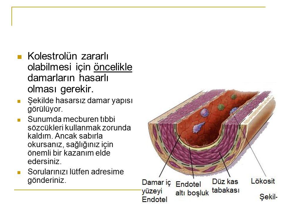 Kolestrolün zararlı olabilmesi için öncelikle damarların hasarlı olması gerekir.