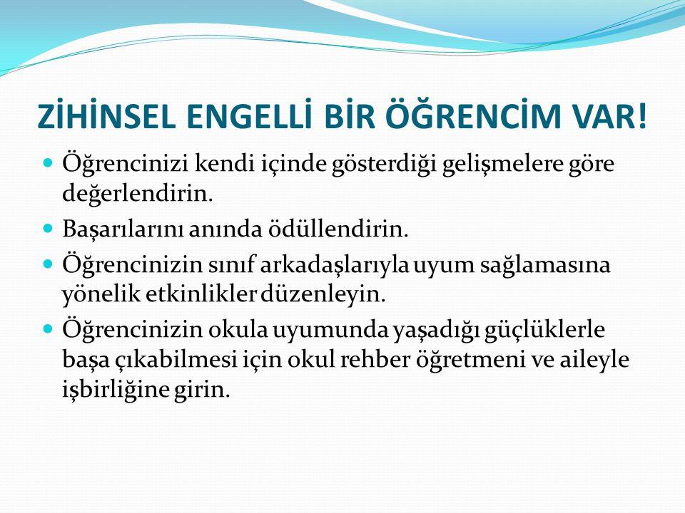 ZİHİNSEL ENGELLİ BİR ÖĞRENCİM VAR!