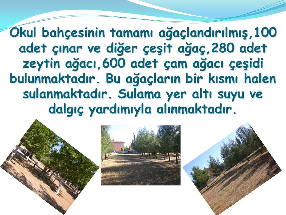Okul bahçesinin tamamı ağaçlandırılmış,100 adet çınar ve diğer çeşit ağaç,280 adet zeytin ağacı,600 adet çam ağacı çeşidi bulunmaktadır.