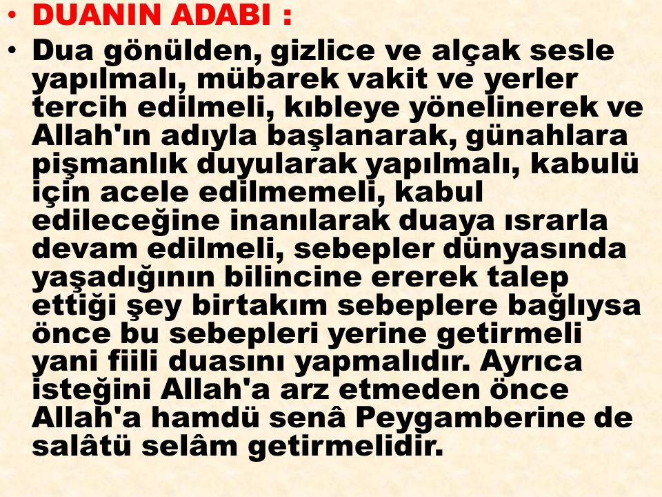 DUANIN ADABI :
