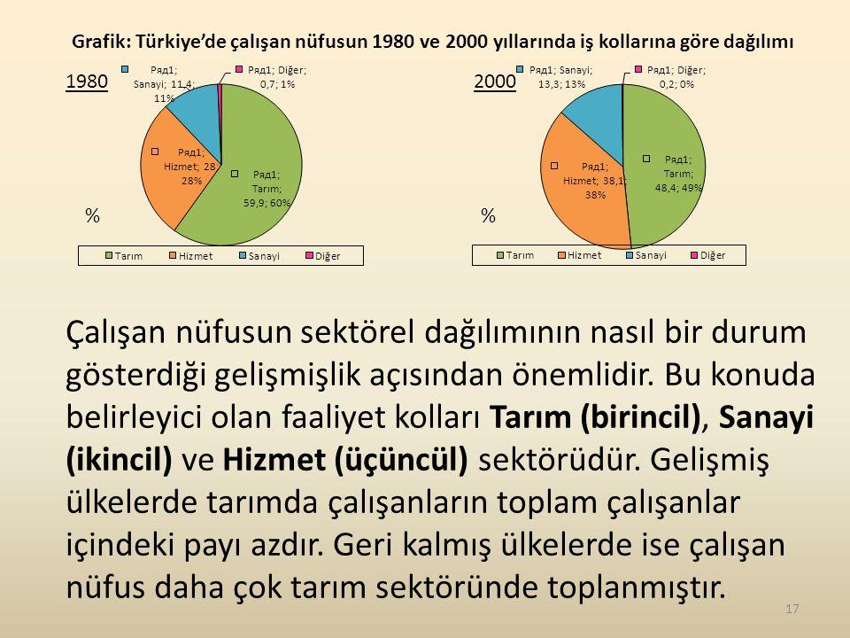 Grafik: Türkiye'de çalışan nüfusun 1980 ve 2000 yıllarında iş kollarına göre dağılımı